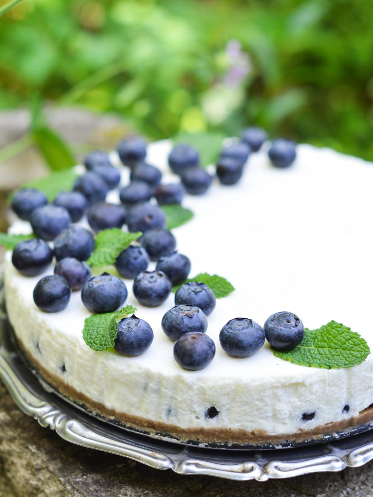 torta od jogurta s borovnicama (7)